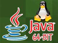 Скачать Java Linux для MineCraft